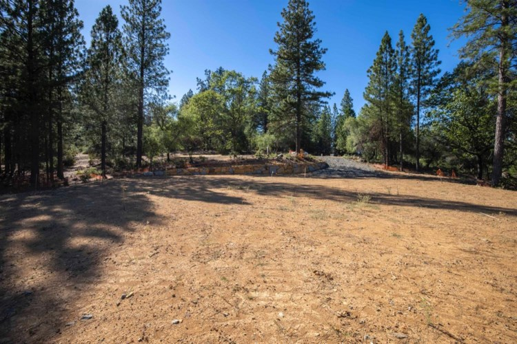 1622 The Point Road, Meadow Vista, CA 95722