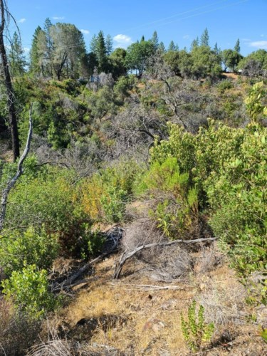 0 Montgomery, Mokelumne Hill, CA 95245