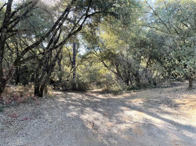 5 Freshwater Lane, El Dorado, CA 95623