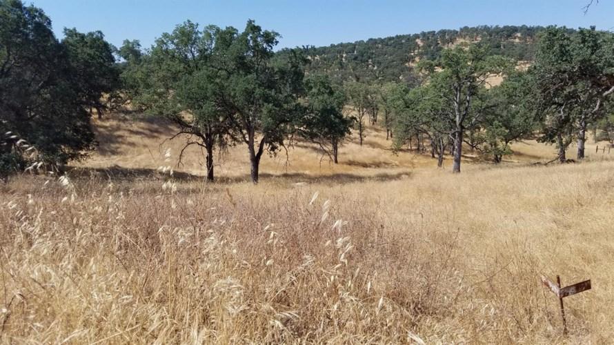 2150 Buena Vista Dr, La Grange, CA 95329