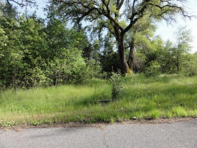 18159 Lasso Loop, Penn Valley, CA 95946