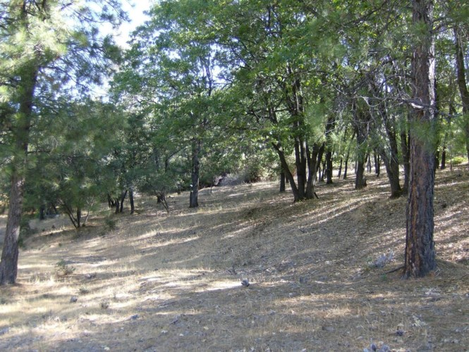 16852 Alexandra Way, Grass Valley, CA 95949