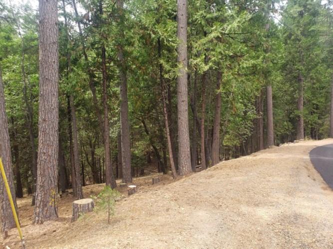 4760 SIERRA SPRINGS Drive, Pollock Pines, CA 95726