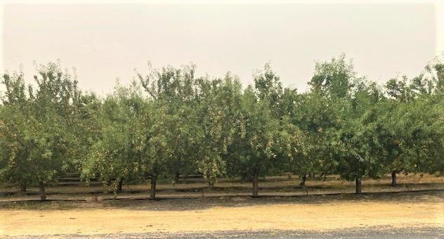 973 Meier Road, Hickman, CA 95323