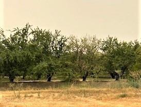 0 Meikle Road, Hickman, CA 95323