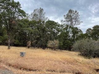 6 Pilot View Drive, Pilot Hill, CA 95664