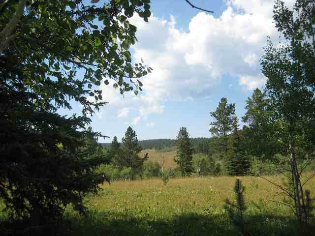 Lot 13 OTHER, Lead, SD 57754