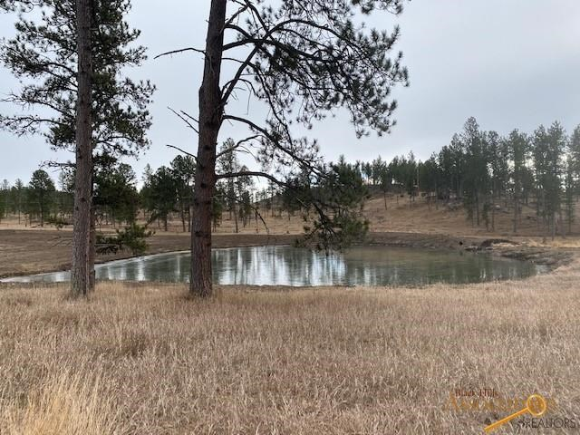 Lot 1 OTHER, Custer, SD 57730