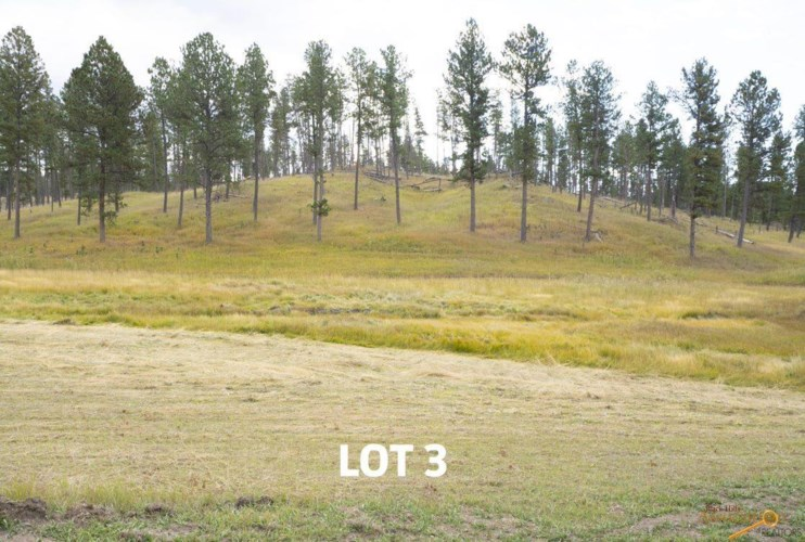 Lot 3 OTHER, Custer, SD 57730