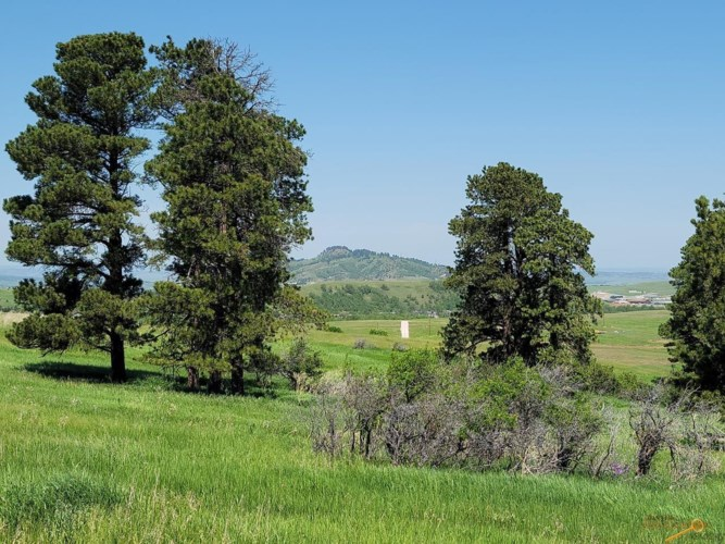 TBD OTHER, Spearfish, SD 57783