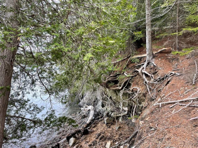 00 Mountain Road Map 5 Lot 21-1, Perry, ME 04666