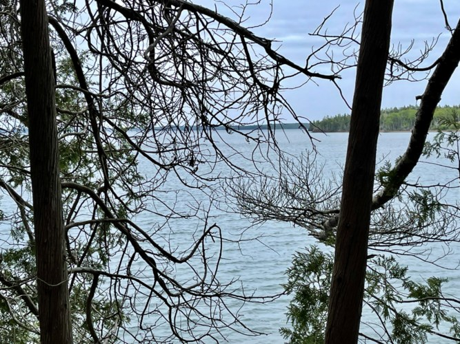 00 Mountain Road Map 5 Lot 21-2, Perry, ME 04666
