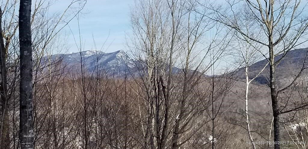 0 Easter Hill Road, Byron, ME 04275
