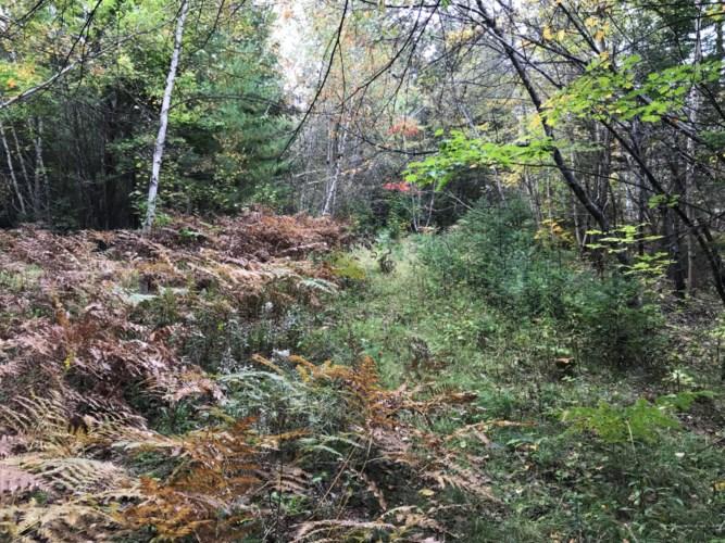 00 Rudge Road, Medway, ME 04460