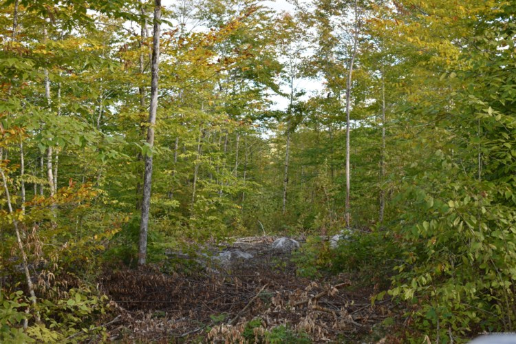 19.2 Acres Mill Hill Road, Springfield, ME 04487