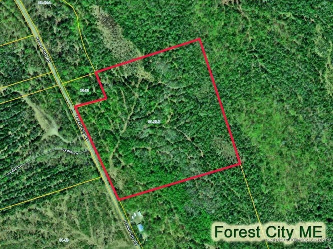 Lot 23.3 Forest City Road, Forest City Twp, ME 04413