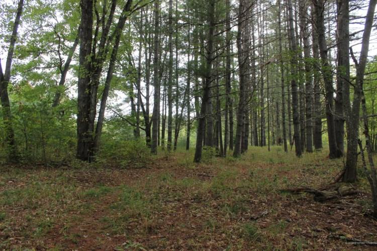 113 Moodys Meadow, Brownfield, ME 04010