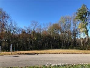 21 Mourning Dove Trail #21, East Windsor, CT 06088