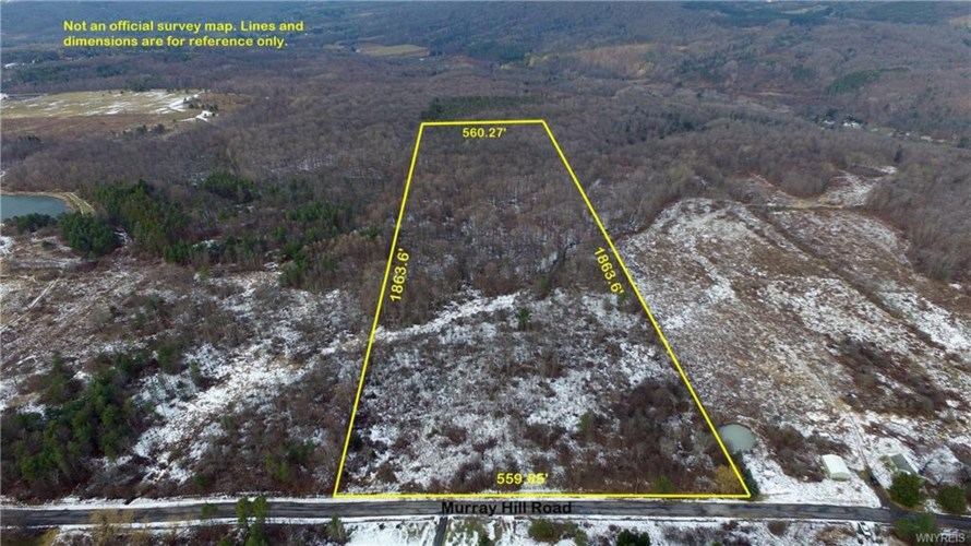 24 Acres Murray Hill Road, Colden, NY 14033
