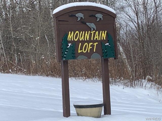 0 Mountain Loft Ln, Humphrey, NY 14741