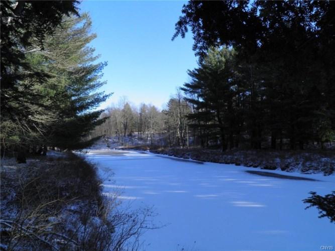 15 Island Branch Road, Fowler, NY 13642