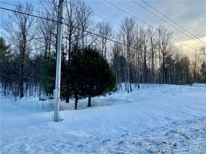 1535 County Route 24, Fowler, NY 13642