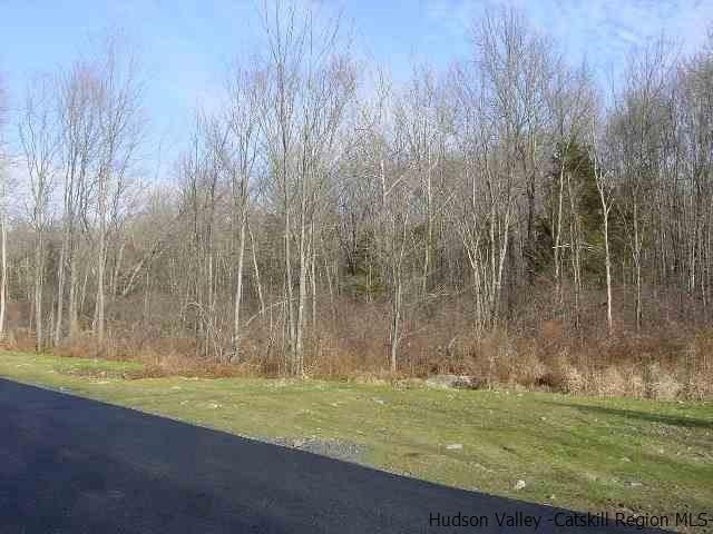 TBD Huckleberry Turnpike, Plattekill, NY 12568