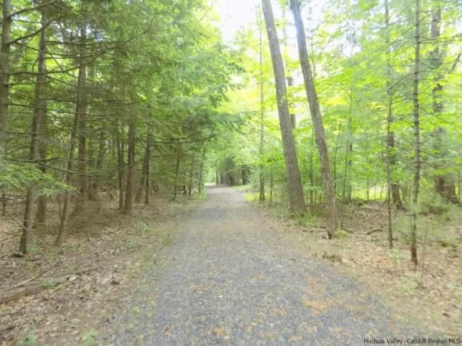 TBD Winne Road, Mount Tremper, NY 12457