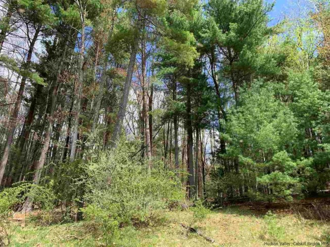 TBD Aster Road, Olive, NY 12461