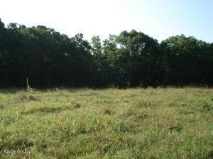 2696 White Oak Road, Seligman, MO 65745