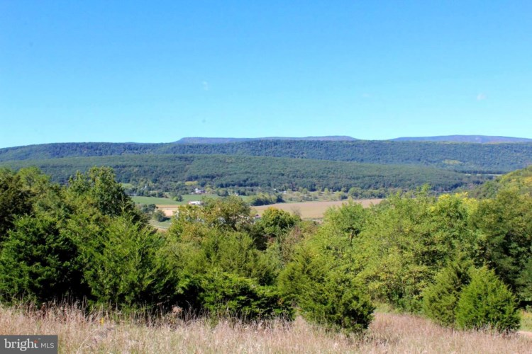 24 +/- ACRES OFF SARATOGA DR, UPPER TRACT, WV 26866