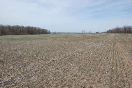 2399 7th Line, Innisfil, ON L9S4G6