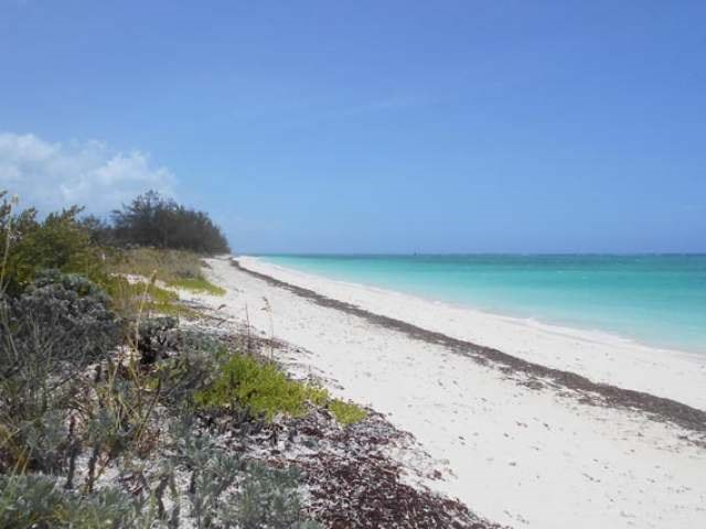 WHITBY HAVEN BEACH FRONT, North Caicos, TC