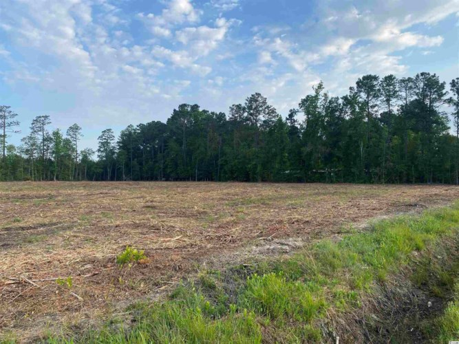 Lot 7 Highway 701 South, Conway, SC 29526