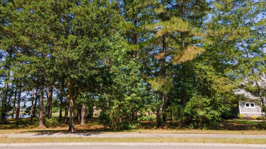 1453 Whooping Crane Dr., Conway, SC 29526