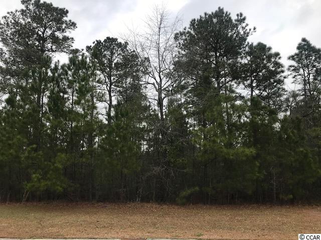 541 Timber Creek Dr., Loris, SC 29569