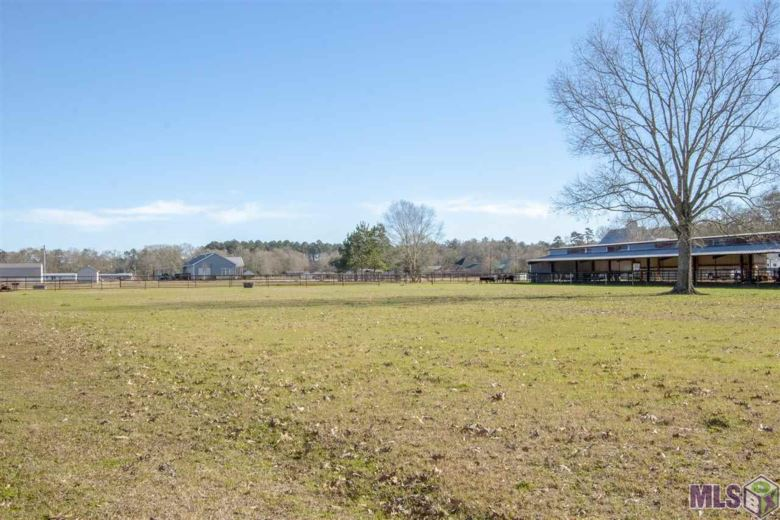18800 AUCOIN LN, Livingston, LA 70754