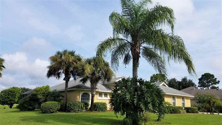 501 Pebble Brook Drive, St Augustine, FL 32086