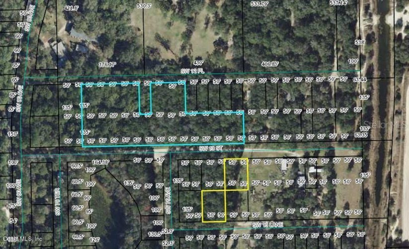 00 SW 12th PLACE  #9-10, BELL, FL 32619