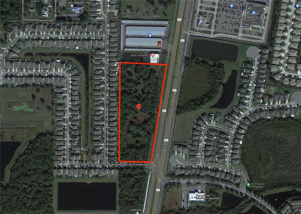 S 11769 301ST HIGHWAY , RIVERVIEW, FL 33578