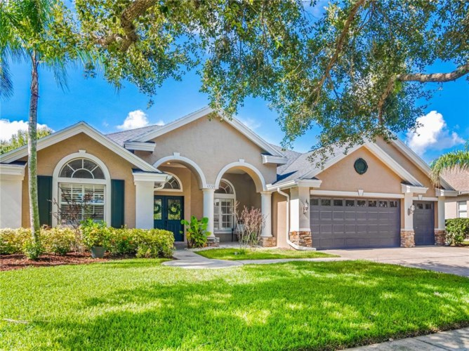 17723 CURRIE FORD DRIVE, LUTZ, FL 33558