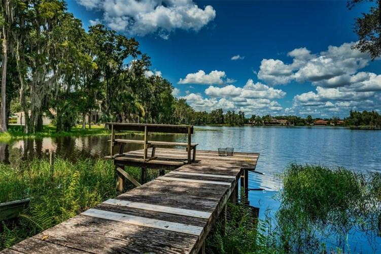 15434 LAKE MAGDALENE BOULEVARD, TAMPA, FL 33613