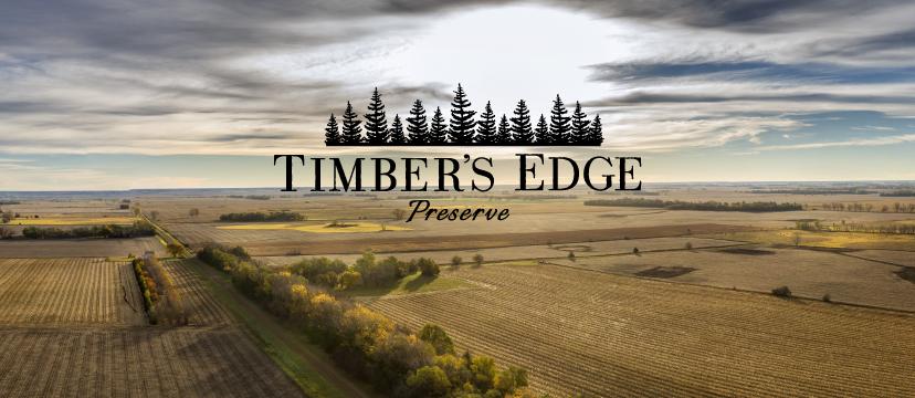 Timber's Edge